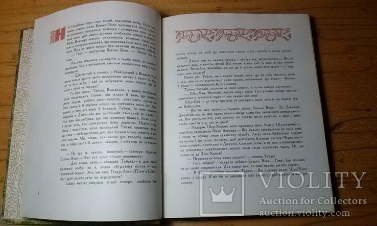 """Р.Кіплінг """"Мауглі""""з книги джунглів(вид-во """"Веселка""""1967 р.тир.65 тис.прим.)., фото №7"""
