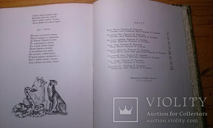 """Р.Кіплінг """"Мауглі""""з книги джунглів(вид-во """"Веселка""""1967 р.тир.65 тис.прим.)., фото №12"""