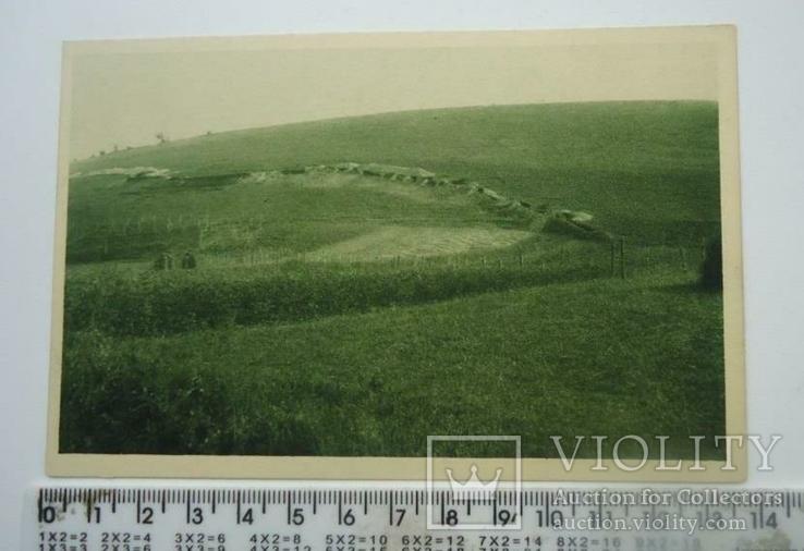 1915 р.окопи золота липа, фото №2