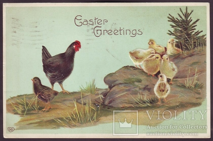 Старинная пасхальная с тиснением. Черная курица с цыплятами. П/п 1910 г., фото №2