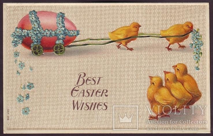 Старинная пасхальная с тиснением. Цыплята везут яйцо. Незабудки. П/п 1910 г., фото №2