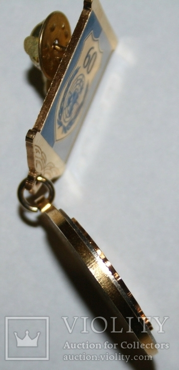 "Медаль ""4 года Межд.комитета ООН по защите прав человека в Украине"", фото №7"