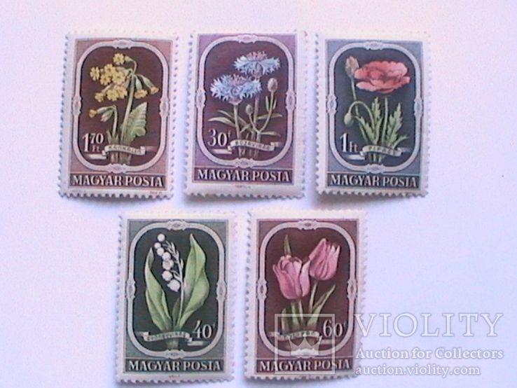 Венгрия 1951 цветы