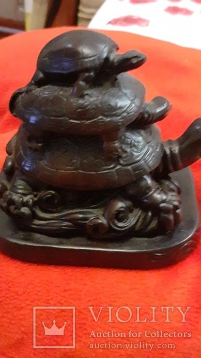 Черепахи., фото №5