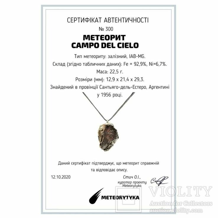 Підвіска із залізного метеорита Campo del Cielo, із сертифікатом автентичності, фото №3