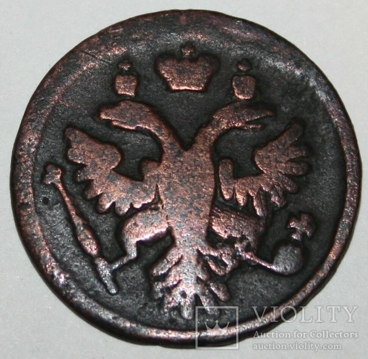 Деньга 1737 год (Анна Иоановна), фото №5