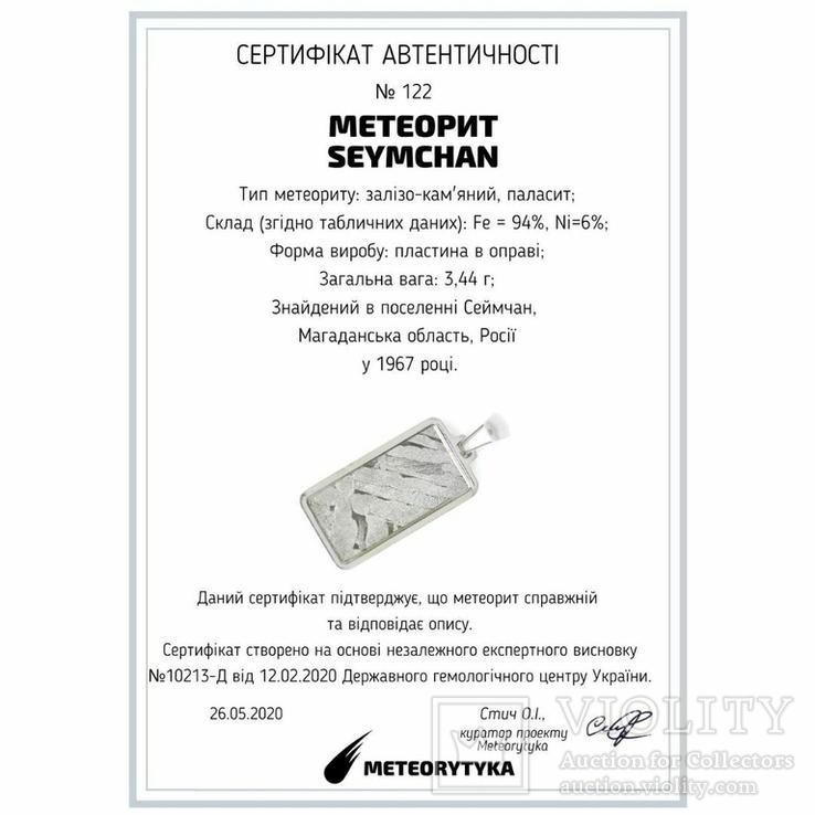 Кулон із залізо-кам'яним метеоритом Seymchan, із сертифікатом автентичності, фото №3