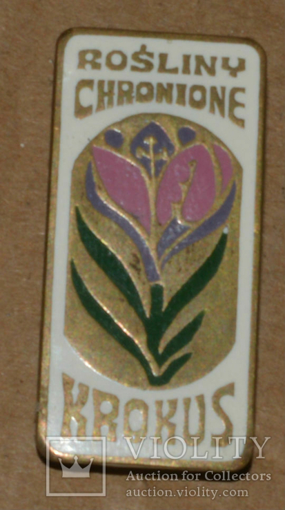 Крокус. польша латунь, фото №2