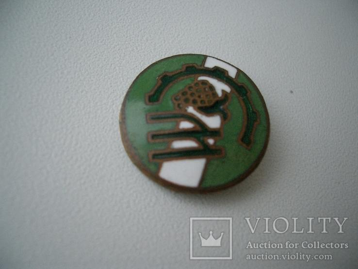 Знак спортклуб бронза эмаль, фото №2