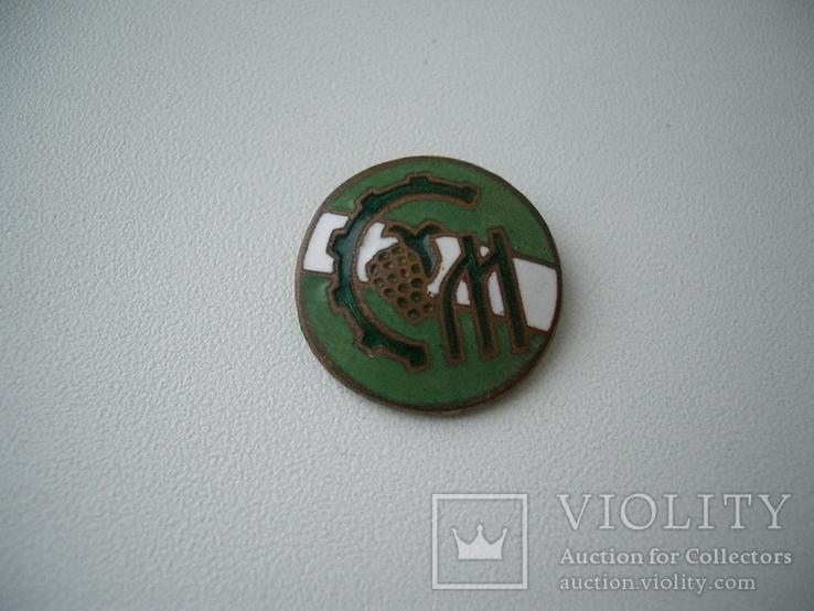 Знак спортклуб бронза эмаль, фото №3