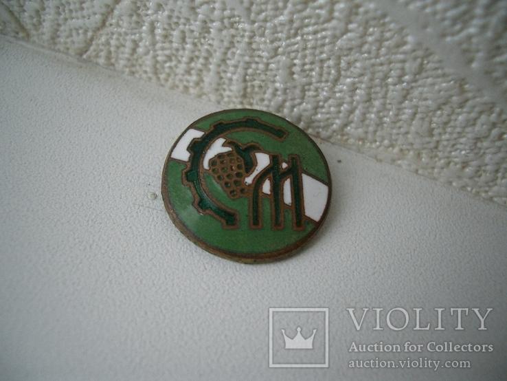 Знак спортклуб бронза эмаль, фото №4