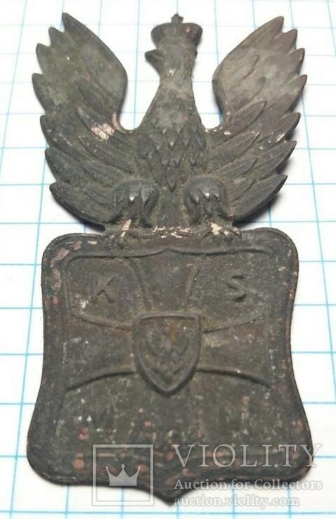 Польський орлик., фото №9