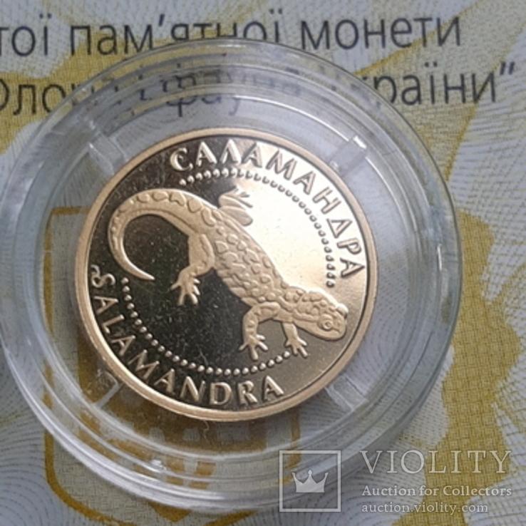 Золото 2 гривні 2003 року Саламандра, фото №3
