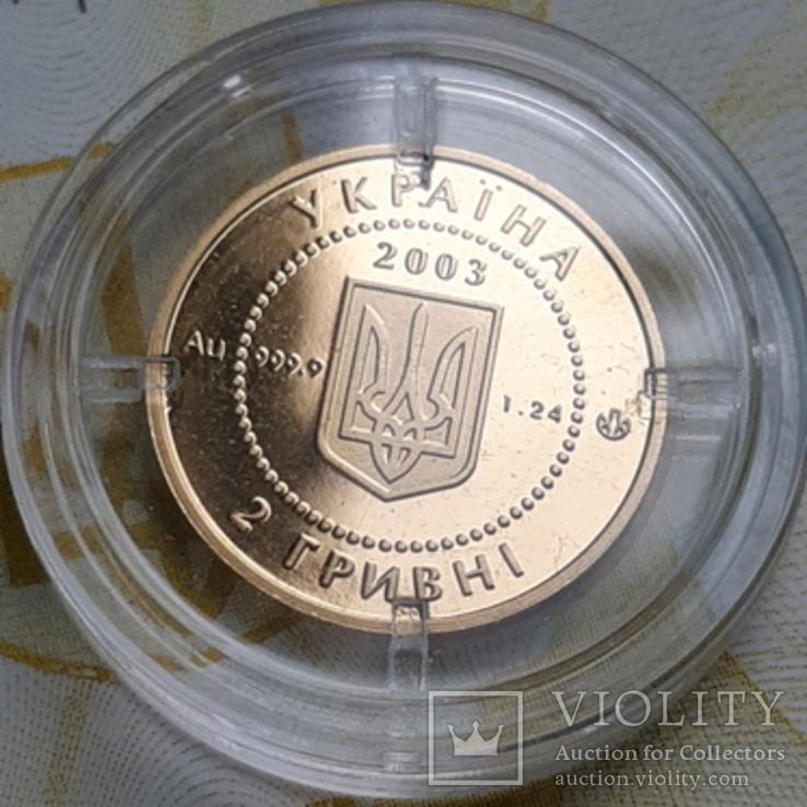 Золото 2 гривні 2003 року Саламандра, фото №6