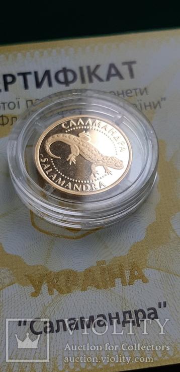 Золото 2 гривні 2003 року Саламандра, фото №9