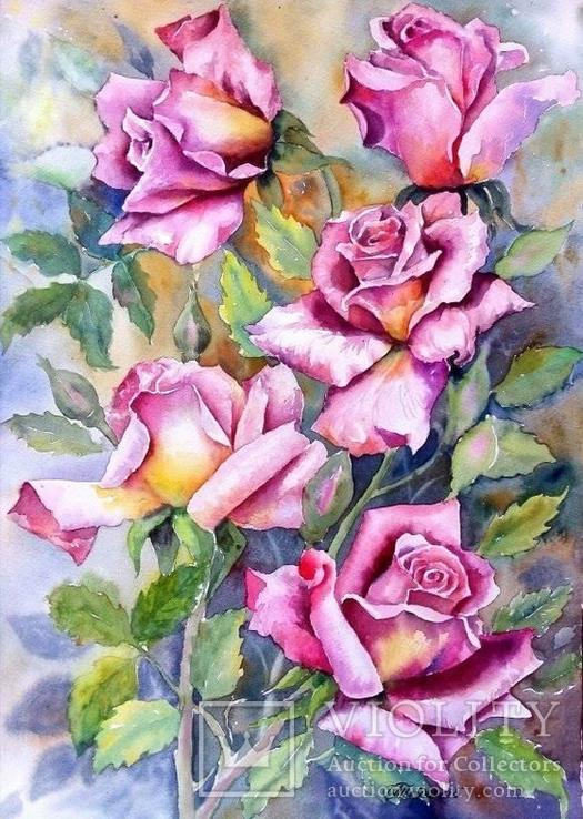 Цветущих роз волшебство