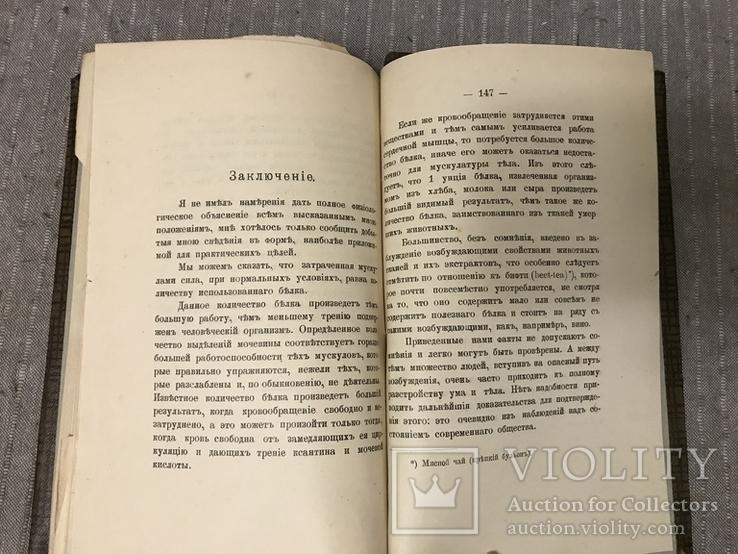 Кулинария для спортсменов 1908 Киевская книга, фото №11