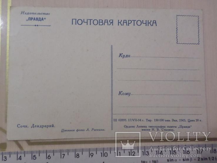 Открытка № 124 издательство правда, фото №3
