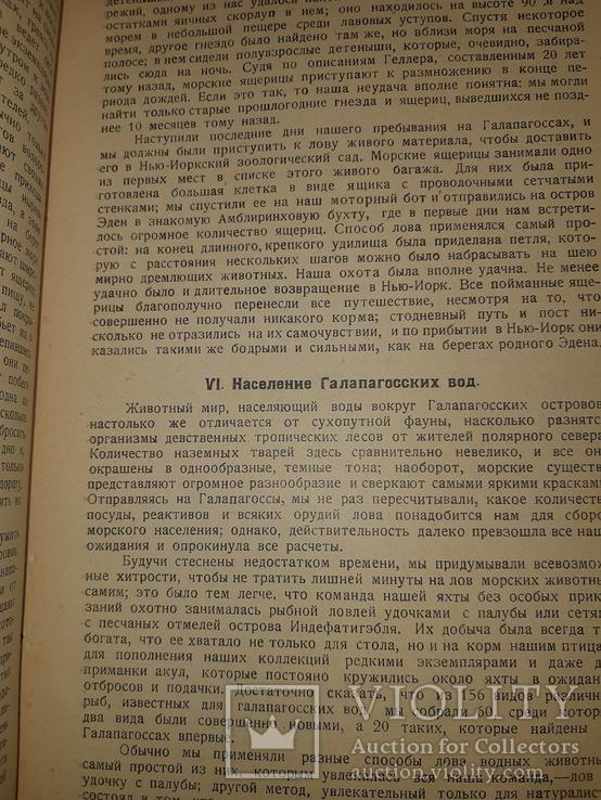 1928 На краю света. Экспедиция на Галапагосские острова в 1923-24 годах, фото №9