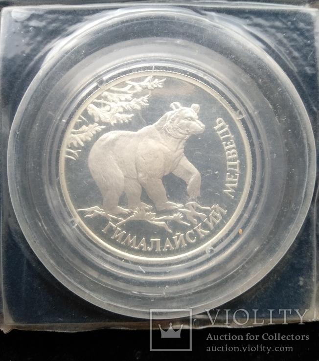 """Один Рубль 1994-го года """" Гималайский медведь """" ( серебро 900 пробы ), фото №4"""