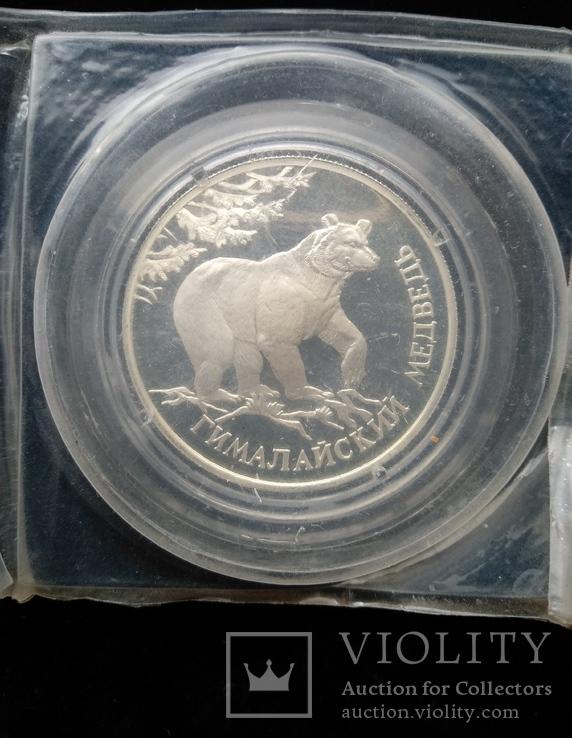 """Один Рубль 1994-го года """" Гималайский медведь """" ( серебро 900 пробы ), фото №5"""