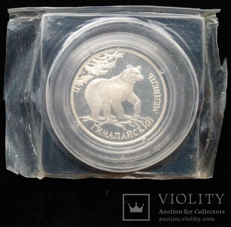 """Один Рубль 1994-го года """" Гималайский медведь """" ( серебро 900 пробы ), фото №7"""