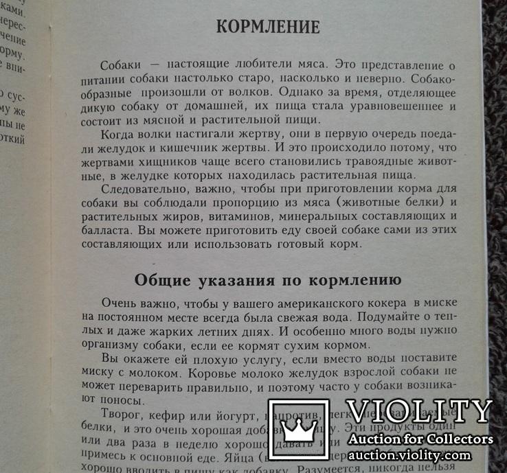 Американский кокер спаниель.(Содер., кормл., разв., леч.), фото №10
