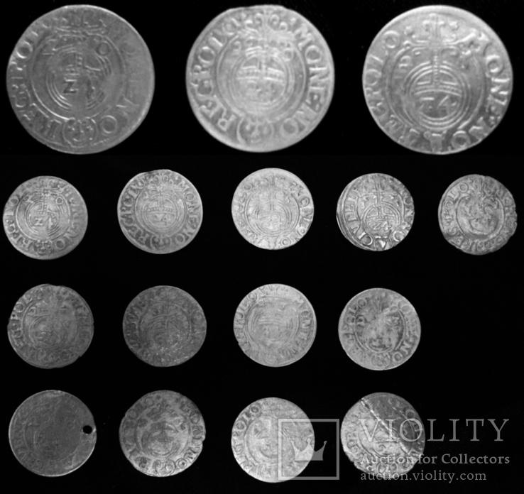 13 монет Сигизмунд, фото №2