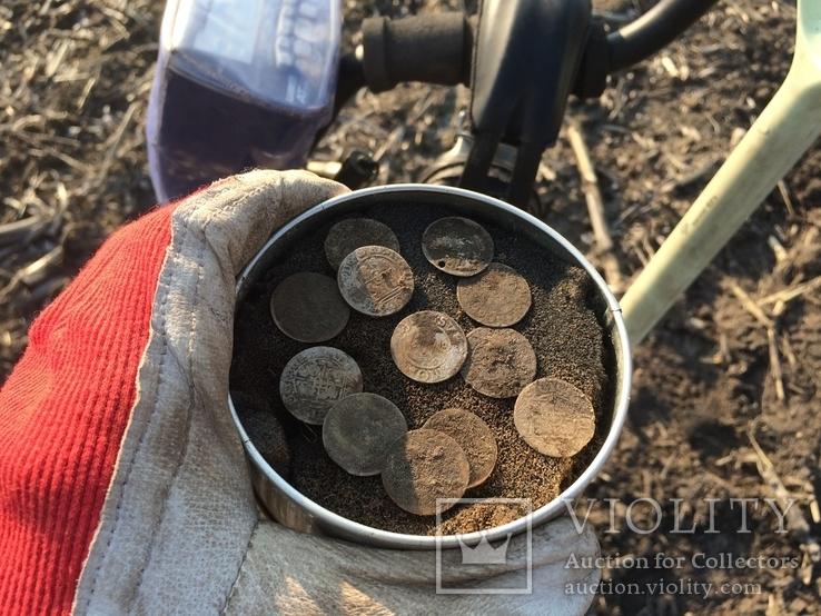 13 монет Сигизмунд, фото №4