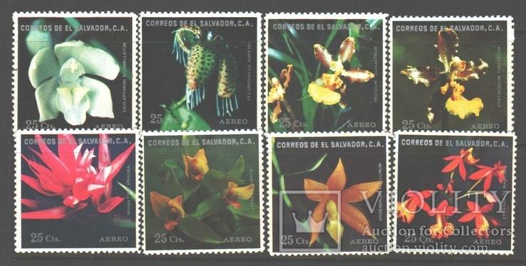 Сальвадор. 1976. Орхидеи *.