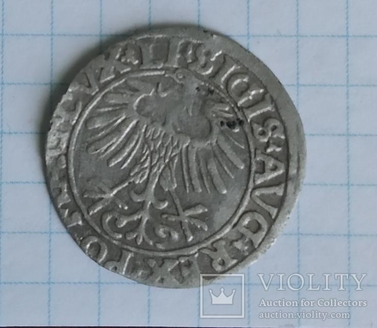 Грош литовський, фото №2