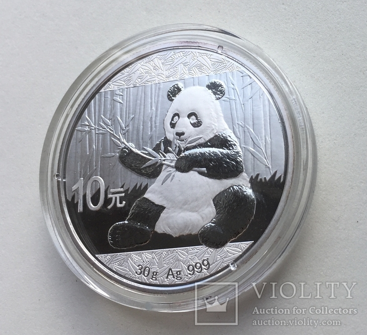 Панда Китай Chinese Panda 2017 cеребро, фото №6