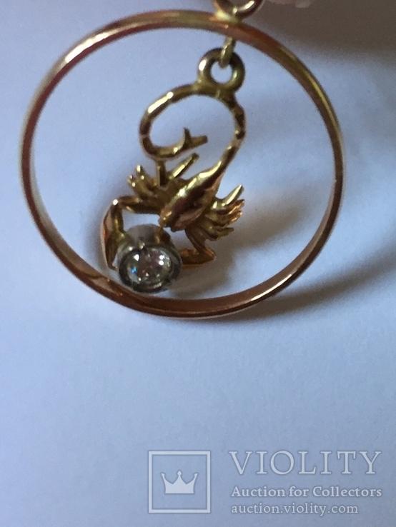 Знак зодиака Скорпион, фото №11