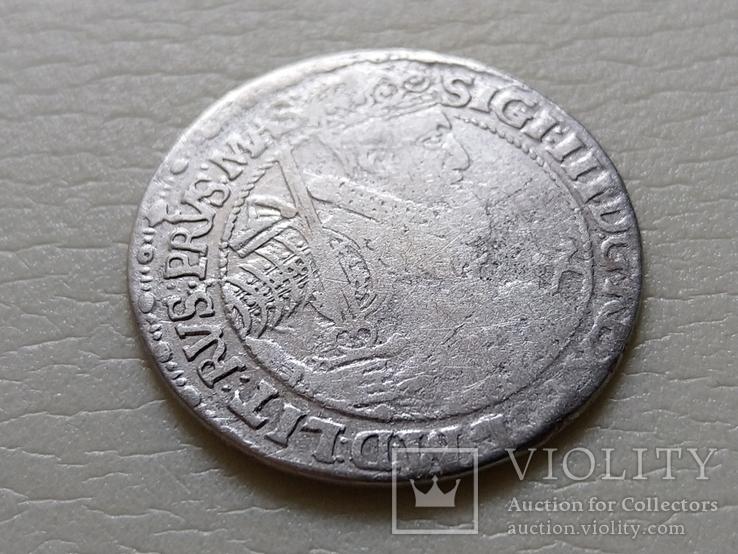 """Коронный Орт 1621 год. Быгдощ. (№5). нет буквы S """"SIGI""""., фото №2"""