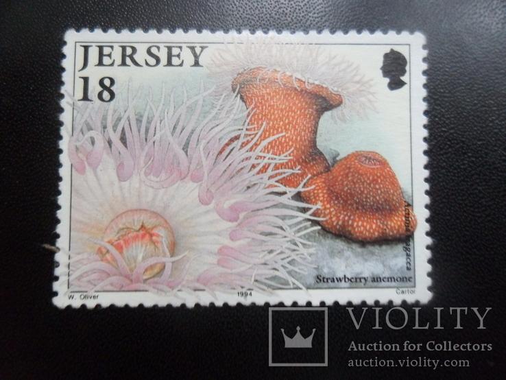 Фауна моря. Джерси. 1994 г. МН, фото №2