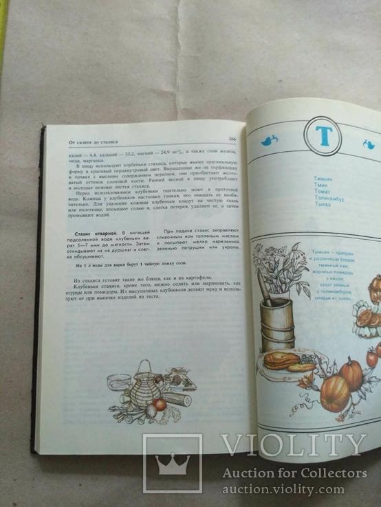 Овощная кулинария Н.И.Бруннек, фото №10