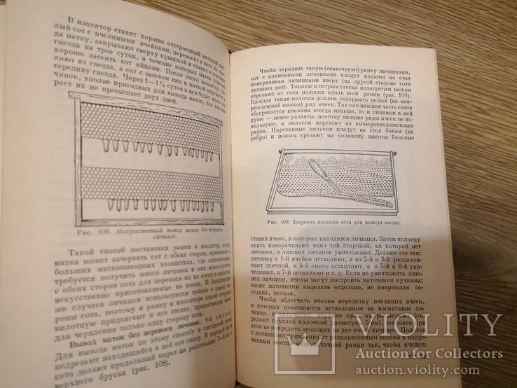 Книга Гусельников Пчеловодство 1960 пасека бджільництво пчелы, фото №11