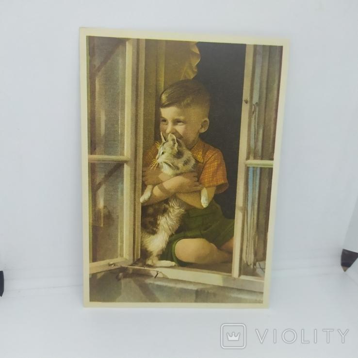 Открытка Мальчик с кошкой в окне. чистая, фото №2