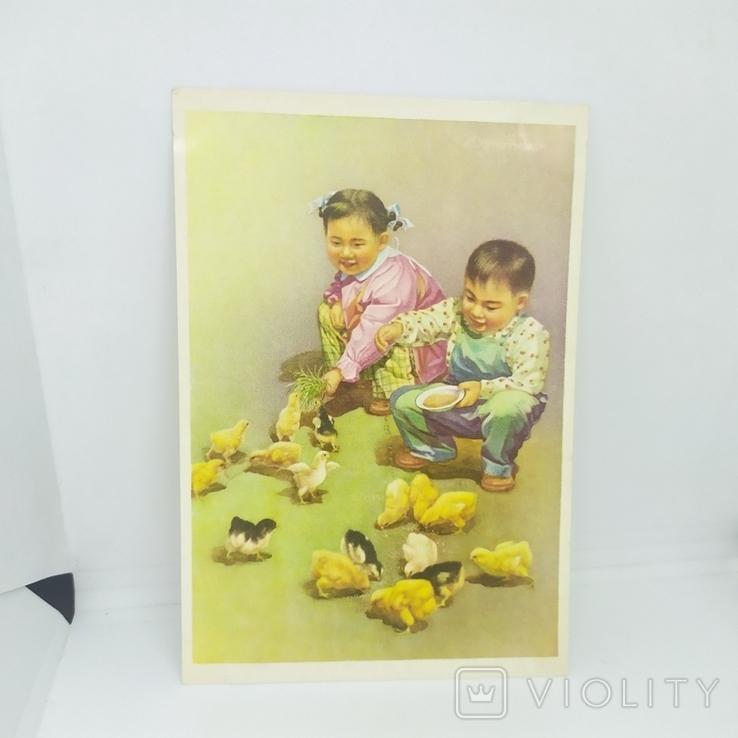 Открытка Китай. Чжан Да-Синь. Дети кормят цыплят. чистая, фото №2