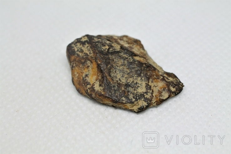 Залізна частина метеорита Seymchan, 10,7 грам, із сертифікатом автентичності, фото №6