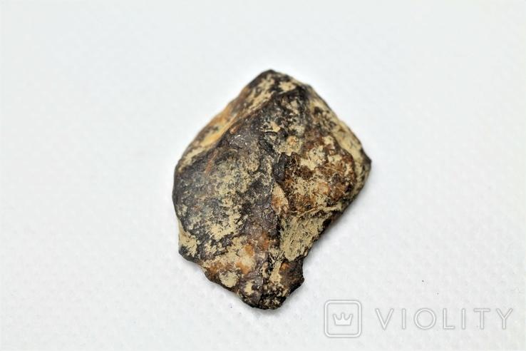 Залізна частина метеорита Seymchan, 10,7 грам, із сертифікатом автентичності, фото №2