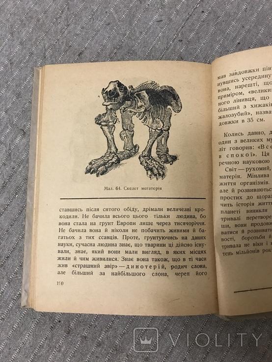 Життя Його закони і походження 1936 Послини і тварини В. Лункевич, фото №9