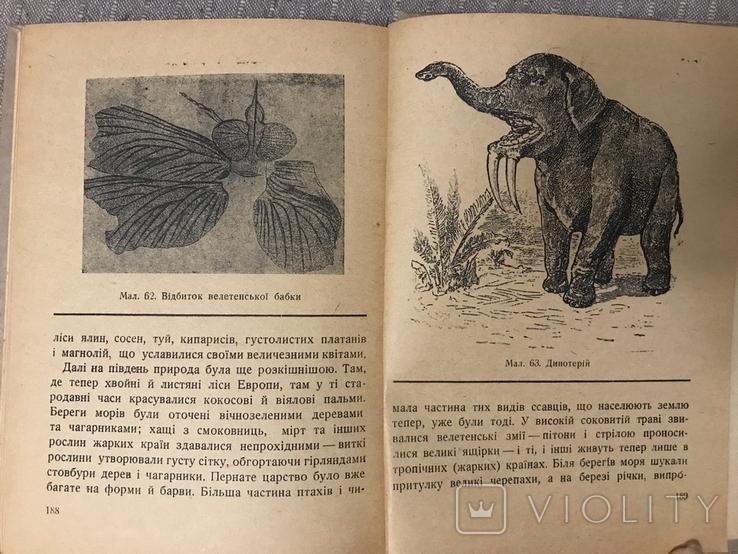 Життя Його закони і походження 1936 Послини і тварини В. Лункевич, фото №10