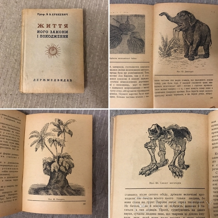 Життя Його закони і походження 1936 Послини і тварини В. Лункевич
