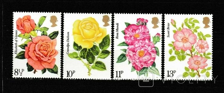 Великобритания 1976 розы