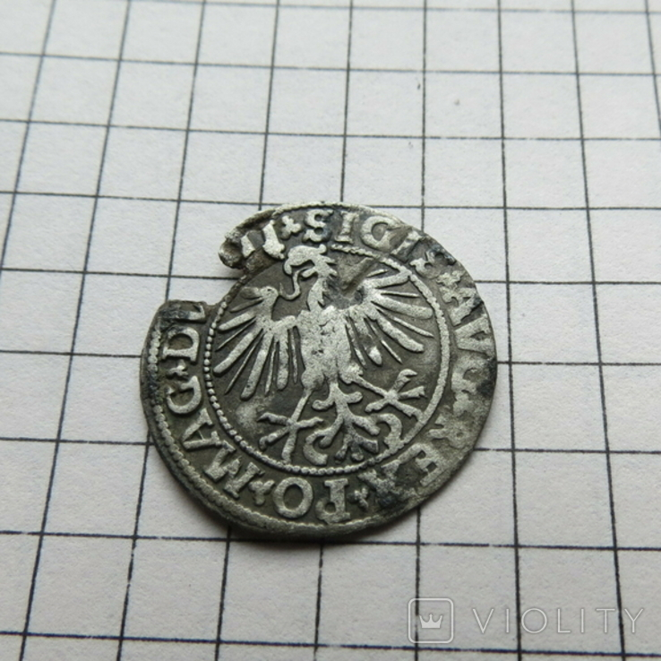 Полугрош.1549 г., фото №7