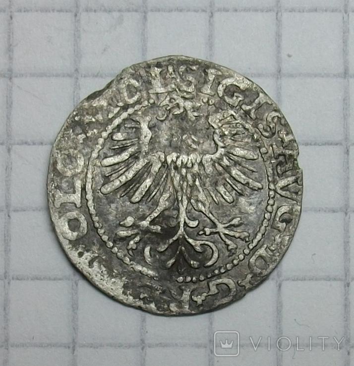 Полугрош 1564 года., фото №7