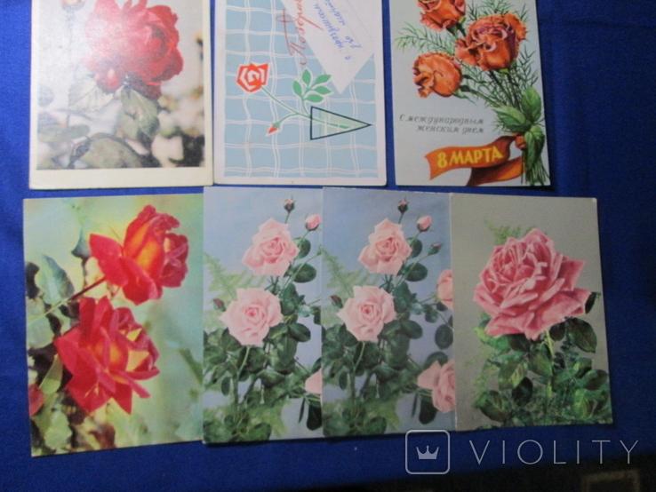 Старые Открытки СССР 60 х  Цветы Розы  10 шт, фото №5
