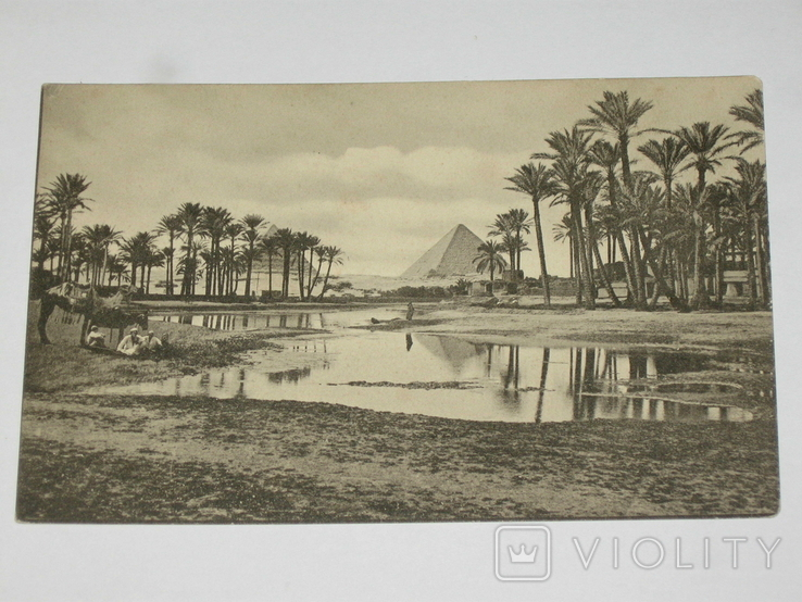 Открытка 1900-1920 годы. № 193 Пирамиды, фото №2