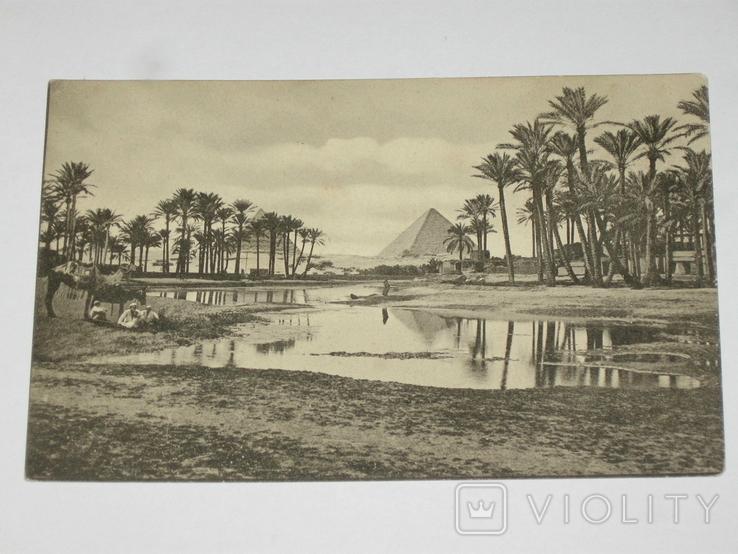 Открытка 1900-1920 годы. № 193 Пирамиды, фото №3